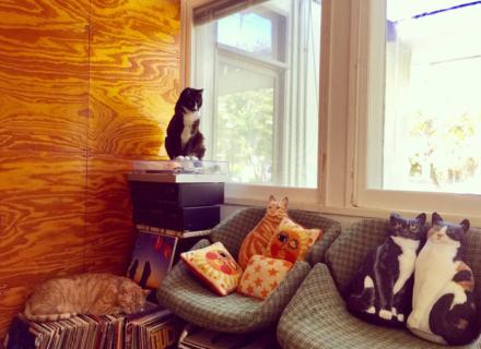 オシャレなネコグッズ満載!レセプションレポート☆グッズプレゼントも♪POMPOMCAT「ネコのいる暮らし展」