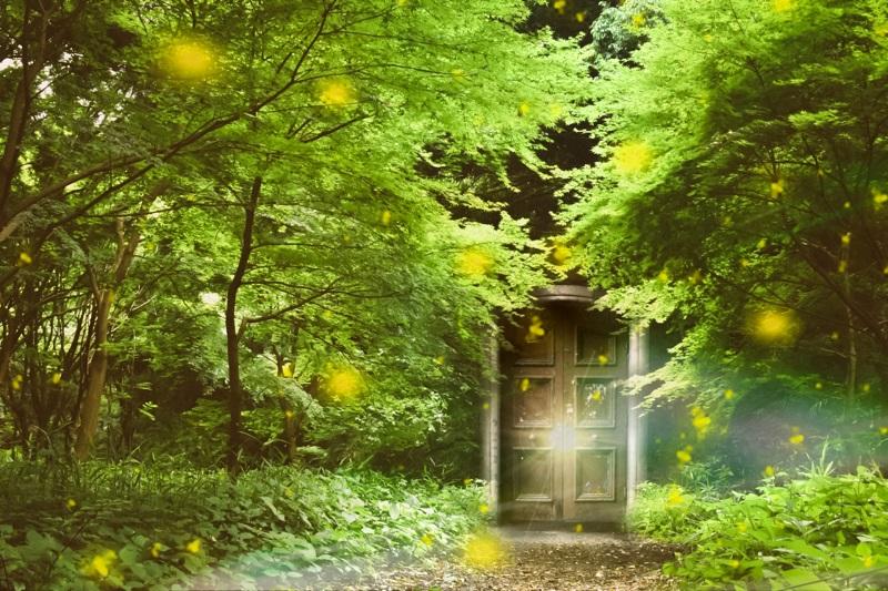 森の一軒家