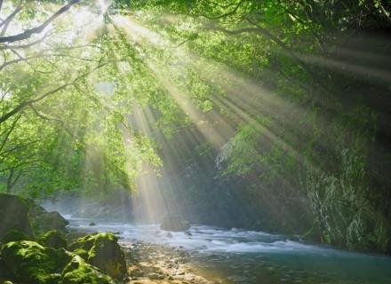 心理テスト「川での過ごし方」