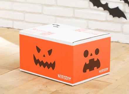 でたー!カボチャ箱で届いてビックリ&かわいいハロウィンのお届けダンボール